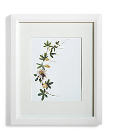 "Martha Stewart Collection Gallery 8"" x 10"" Wall Frame, Created for Macy's"