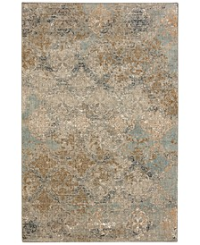 Touchstone Moy Willow Gray Area Rug Collection