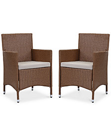 Lyster Set of 2 Outdoor Chairs, Quick Ship