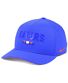 Nike Florida Gators Summer Seasonal Swoosh Flex Cap