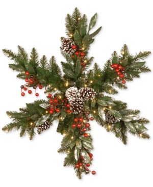 National Tree Company 32 Frosted Pine Berry Snowflake With 35 Warm White Led Lights