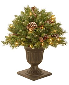 "24"" Frosted Berry Porch Bush In A Dark Bronze Urn With 50 Clear Lights"