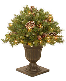 "National Tree Company 24"" Frosted Berry Porch Bush In A Dark Bronze Urn With 50 Clear Lights"