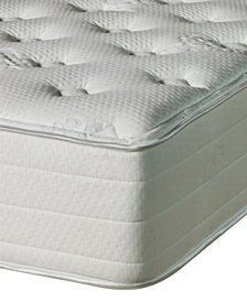 Nature's Spa by Paramount Celestial Latex 12'' Extra Firm Mattress- Full