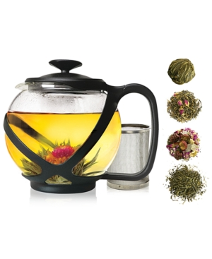 Primula Teas of the World Glass Teapot Gift Set