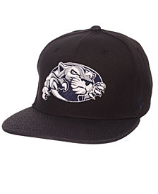 Zephyr Penn State Nittany Lions Spider Snapback Cap