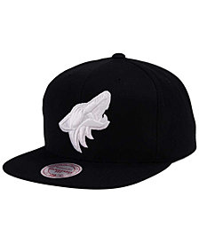Mitchell & Ness Arizona Coyotes Respect Snapback Cap