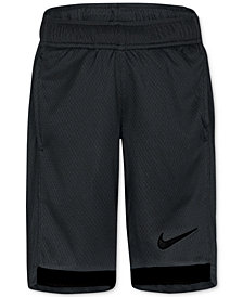Nike Dry Trophy Shorts, Toddler Boys