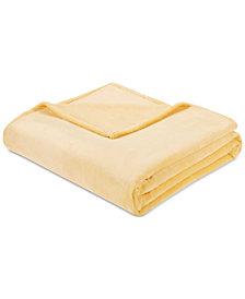 Intelligent Design Microlight Plush King Oversized Blanket