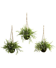 Nearly Natural 3-Pc. Mini Ruscus Sedum & Sperengeri Hanging Basket Set