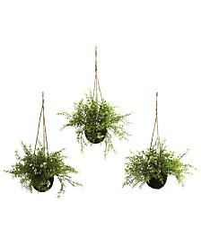 Nearly Natural 3-Pc. Mini Ruscus Sedum & Sperengeri Hanging Basket Set