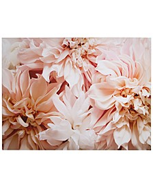 Blushing Blooms Canvas Print