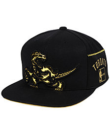 Mitchell & Ness Toronto Raptors Patent Cropped Snapback Cap
