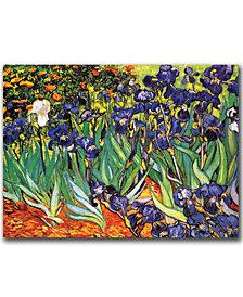 "Vincent van Gogh 'Irises at Saint-Remy' 35"" x 47"" Canvas Art Print"