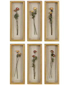 Uttermost Rosalie 6-Pc. Long Stem Shadow Box Wall Art Set