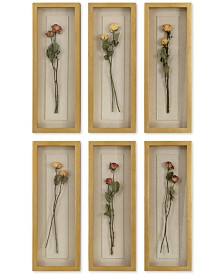 Uttermost Rosalie 6-Pc. Long Stem Shadow Box Wall Art Set