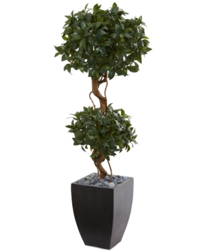 Nearly Natural 45 Sweet Bay Double Topiary Artificial Tree in BlackWashed Planter