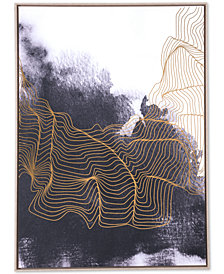 Zuo Furious Canvas Print
