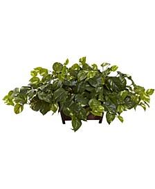 Pothos Artificial Plant in Decorative Rectangular Planter