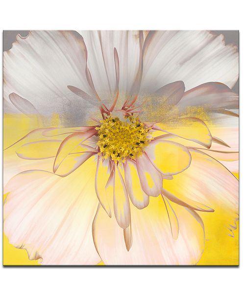 Ready2HangArt 'Painted Petals XXXIV' Canvas Wall Decor