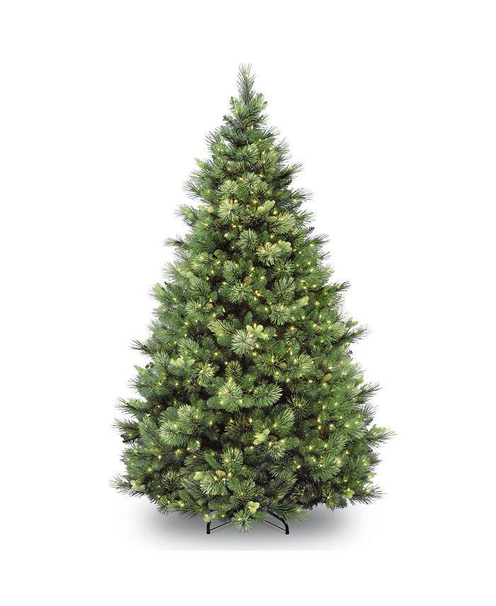 National Tree Company - National Tree 6 .5' Carolina Pine Tree with 650 Clear Lights
