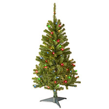 National Tree 4' Canadian Fir Grande  with 100 Multi Lights