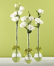 Sleek And Chic Set of 3 Teardrop Vases with Sage Green Ribbon Includes 3 Sizes