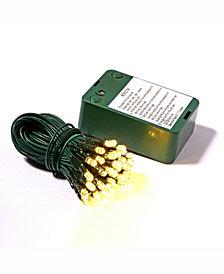 Vickerman 50 Warm White Wide Angle LED Light on Green Wire, 15' Christmas Light Strand
