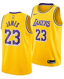 Nike Men's LeBron James Los Angeles Lakers Icon Swingman Jersey