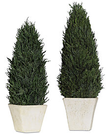 Uttermost Cypress Cone Topiaries Set of 2