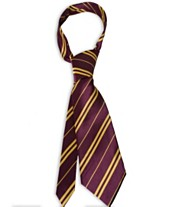 ea30f25233f7 Harry Potter Gryffindor Kids Economy Tie Accessory