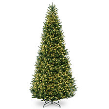 National Tree 15' Natural Fraser Slim Fir Tree with 1800 Clear Lights