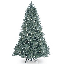 National Tree 7' Feel Real Downswept Douglas Blue Fir Hinged Tree with 700 Clear Lights