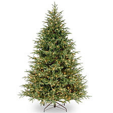 National Tree 6 .5' Frasier Grande Tree with 550 Clear Lights