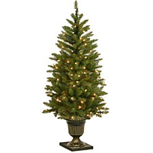 4' Dunhill Fir Entrance Tree with 70 Clear Lights in Dark Bronze Pot