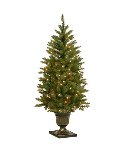 National Tree Company 4' Dunhill Fir Entrance Tree with 70 Clear Lights in Dark Bronze Pot
