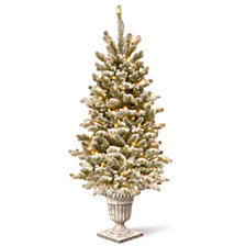 National Tree Company 4' Feel Real® Snowy Sheffield Spruce Entrance Tree in Silver Brushed Urn with 70 Clear Lights