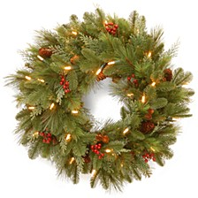 """National Tree 24"""" Noelle Wreath with 30 Soft White LED Battery Operated Lights"""