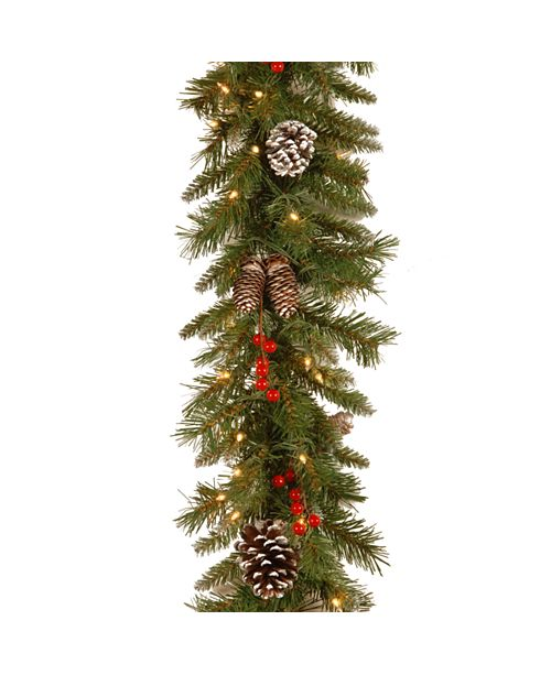 """National Tree Company 9' x 10"""" Frosted Berry Garland with 100 Clear Lights"""