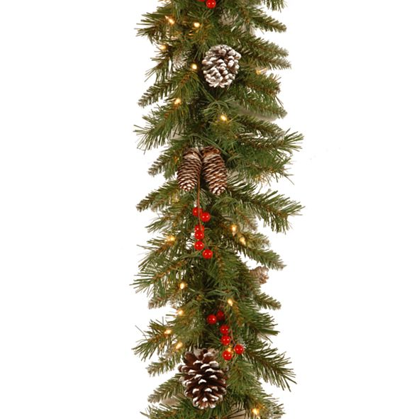 "National Tree Company 9' x 10"" Frosted Berry Garland with 100 Clear Lights"