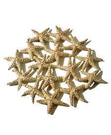 Michael Michaud Starfish Trivet