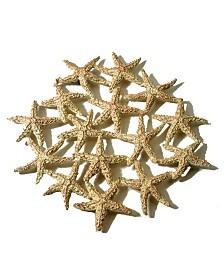 Michael Michaud Starfish Trivet