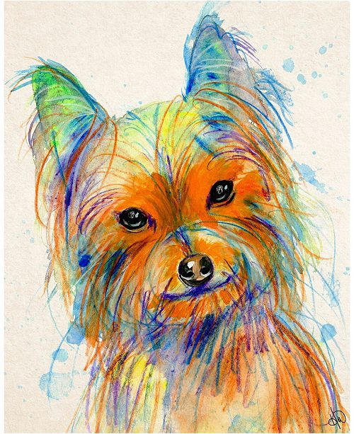 "Creative Gallery Colorful Bella Yorkie Dog 20"" X 24"" Acrylic Wall Art Print"