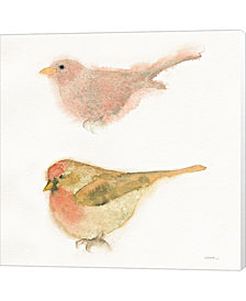 Watercolor Birds II by Shirley Novak Canvas Art