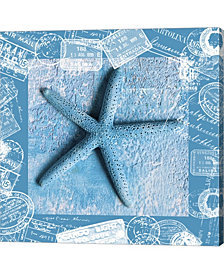 Starfish By Andrea Haase Canvas Art