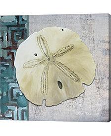 Sand Dollar 1 Side by Megan Duncanson Canvas Art