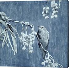 Denim Songbird Ii By Edward Selkirk Canvas Art