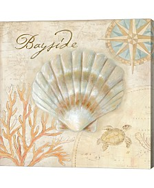 Nautical Shells II By Cynthia Coulter Canvas Art