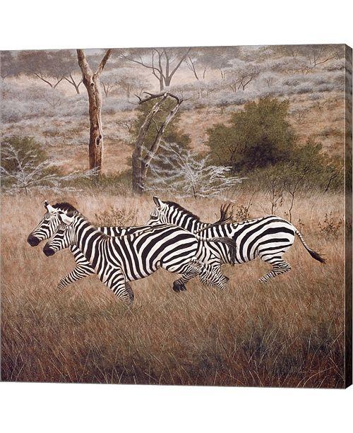 Metaverse Zebra By David Knowlton Canvas Art