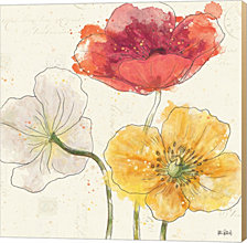 Painted Poppies V by Katie Pertiet Canvas Art